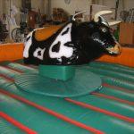 Alquiler toro mecanico para fiesta de adultos en Alicante y Murcia