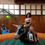 Alquilar toro mecánico para fiesta vaquera del oeste