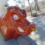 Alquiler de Bufalo mecánico para despedidas de soltero Alicante y Murcia