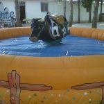 Alquiler toro mecánico infantil para niños en Alicante