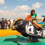 Alquiler toro mecanico para niños y adultos en Alicante